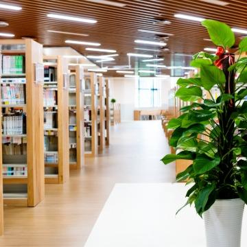 a2防火铝金属复合板应用-图书馆